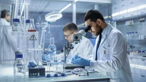 Cientistas fazendo pesquisa