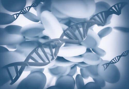 Moléculas de DNA
