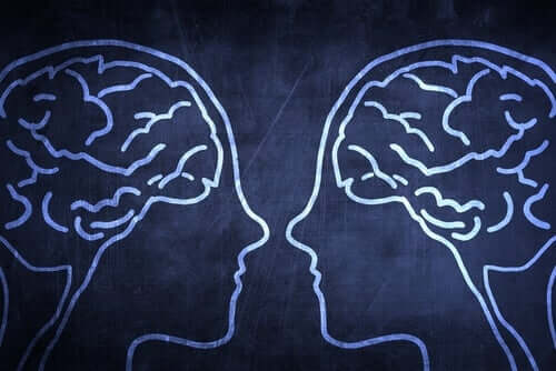 Por que o cérebro social é uma vantagem evolutiva?
