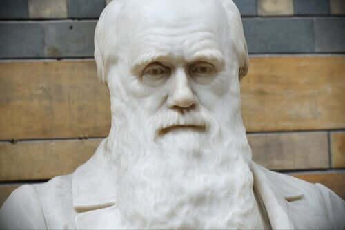 As melhores frases de Charles Darwin