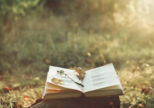 Como a poesia pode aliviar a dor