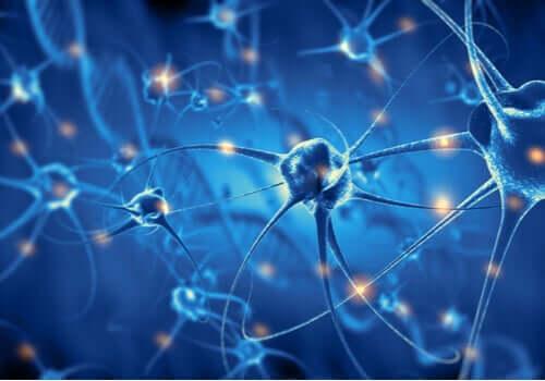 Ligações neuronais