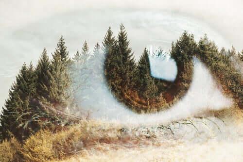 Paisagem e olho fundidos em um só