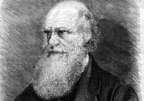 Desenho de Charles Darwin