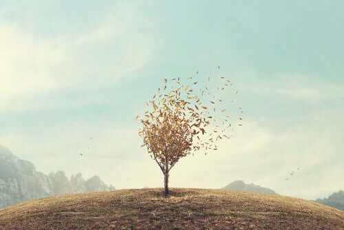 A árvore da autoestima