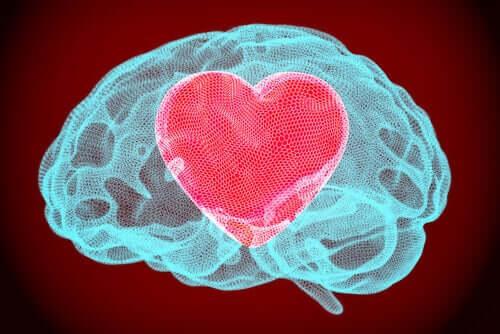 Autorregulação emocional: os outros mostram apenas o local da sua ferida