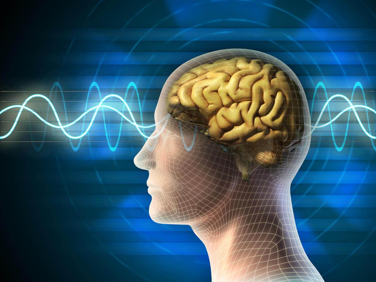 Atividade do cérebro