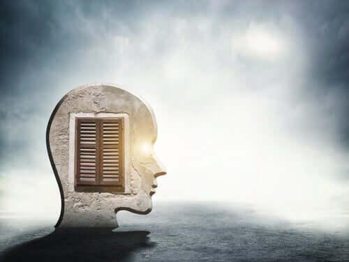 A janela da mente