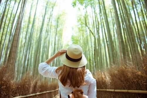Mulher em floresta de bambus