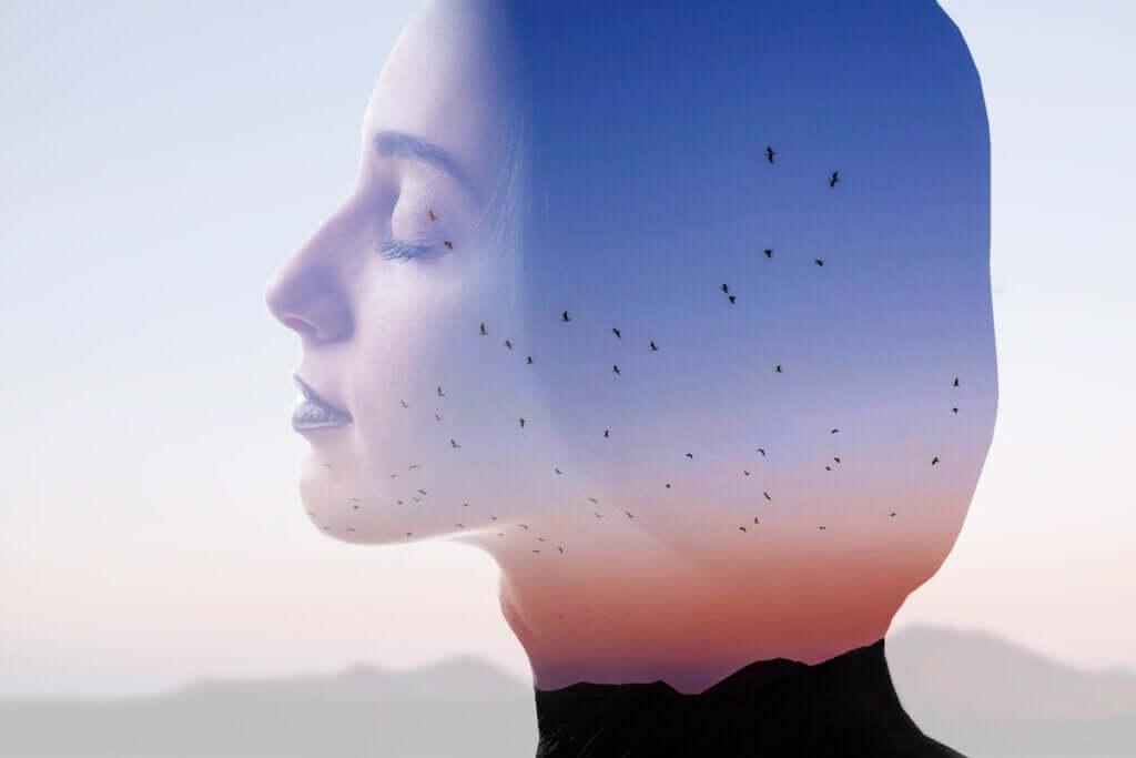 Como você está alimentando a sua mente?