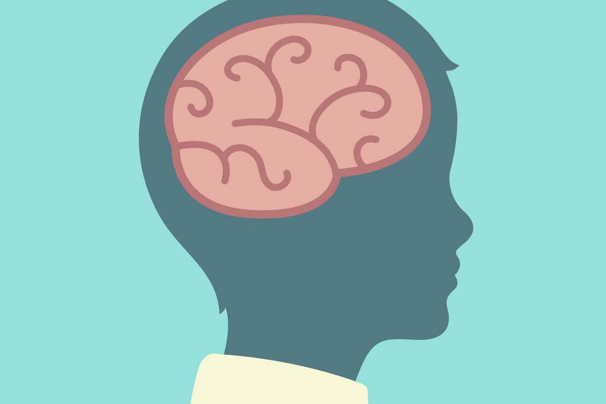 A teoria do desenvolvimento cognitivo de Piaget