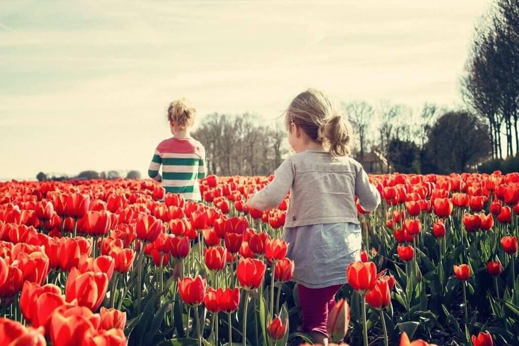 Habilidades socioemocionais na infância