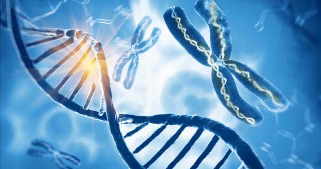 Síndrome de Klinefelter: um cromossomo X a mais nos homens