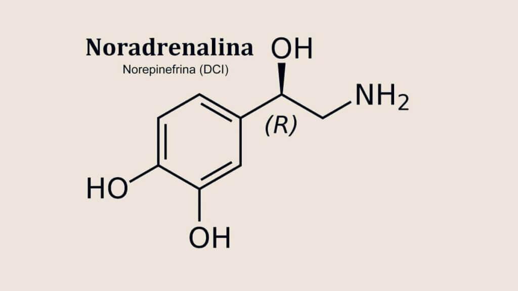 Fórmula química da noradrenalina