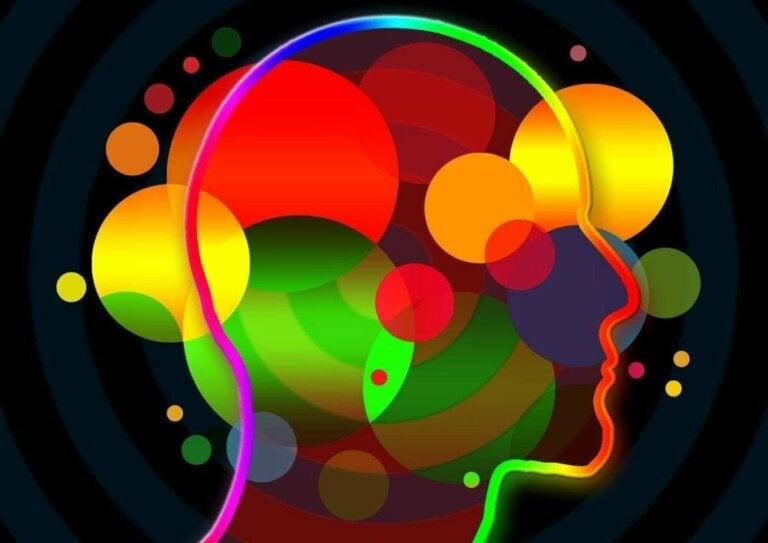 O que são as habilidades socioemocionais?