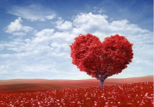 Biografia de São Valentim, o santo dos apaixonados