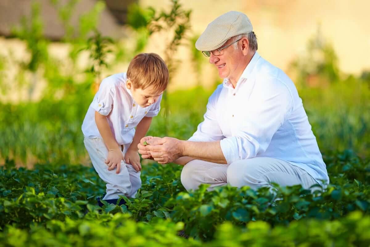 Neto e avô no jardim