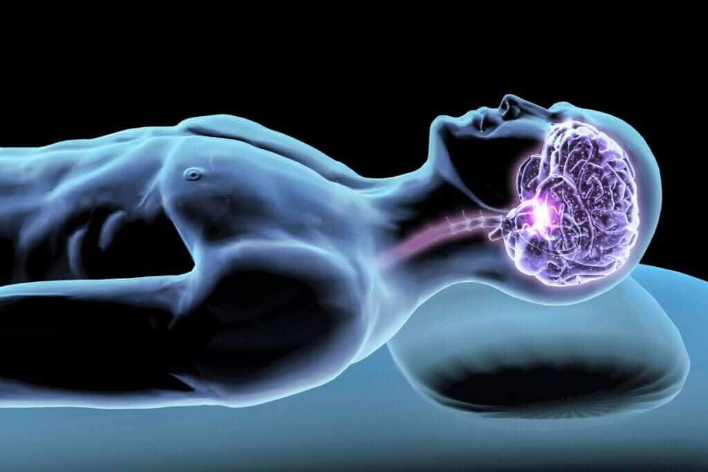 Hormônios do sono: mediadores do seu descanso