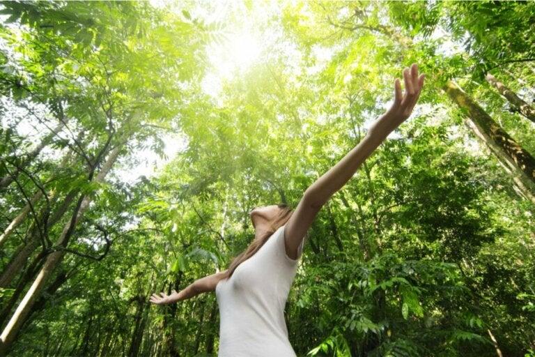 Inteligência naturalista: no que consiste e para que serve?
