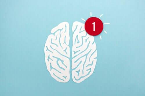 A atenção: uma faculdade mental decisiva, segundo vários pensadores