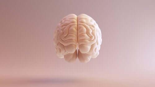 A teoria bifatorial de Spearman sobre a inteligência