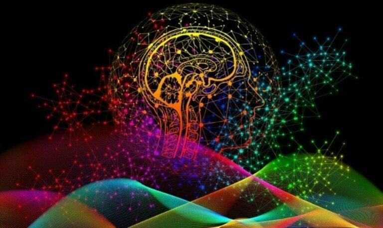 Impressões digitais do cérebro: o que são e qual é a sua importância?