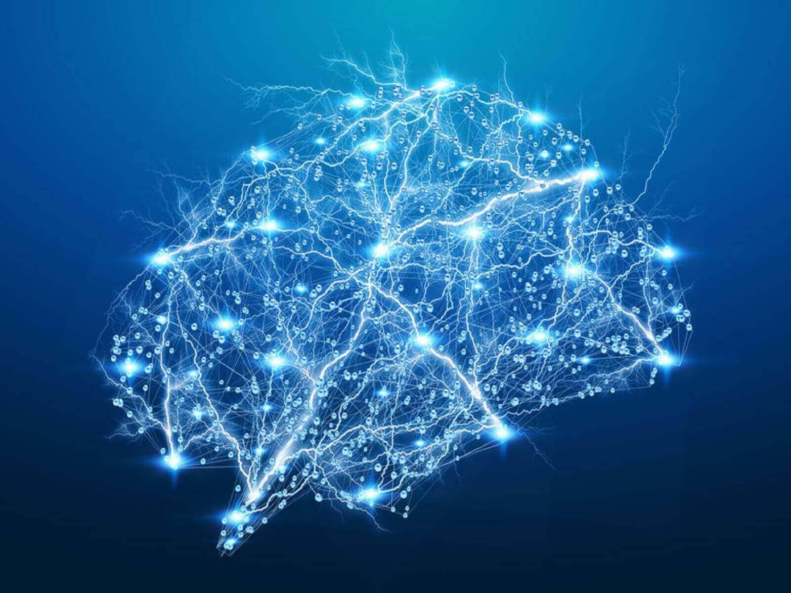 O que são as impressões digitais do cérebro?