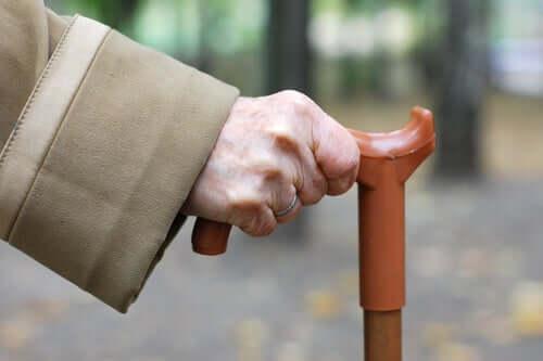 Cane Fu: a nova arte marcial para idosos