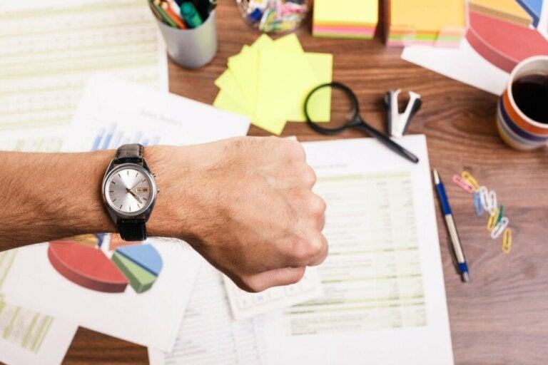 Quais são os horários de maior produtividade?