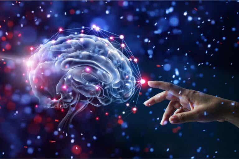12 hábitos que cuidam do cérebro e reduzem o risco de demência