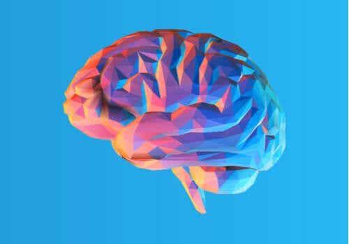 A teoria modular da mente