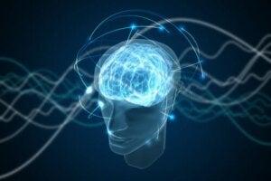 A fascinante teoria da consciência quântica