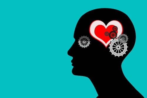 Razão e coração