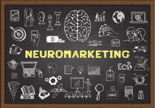 O neuromarketing e o cérebro do consumidor