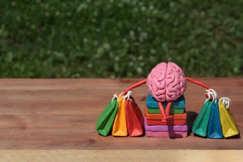 Psicologia do consumidor: características e modelos teóricos