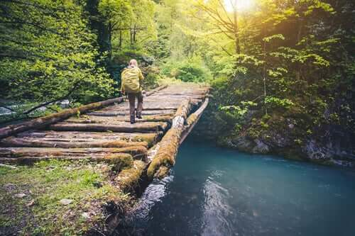 Viajante atravessando ponte