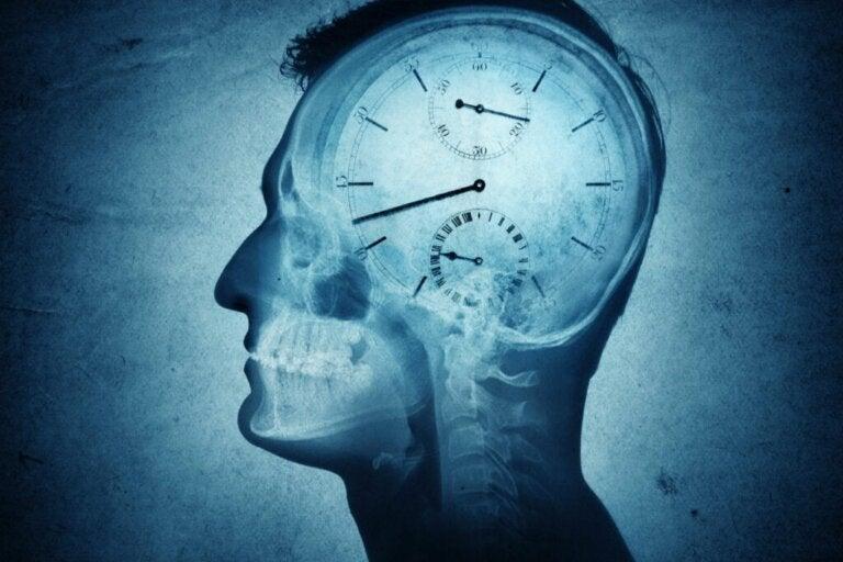 Cronobiologia: o que é e como pode nos afetar?