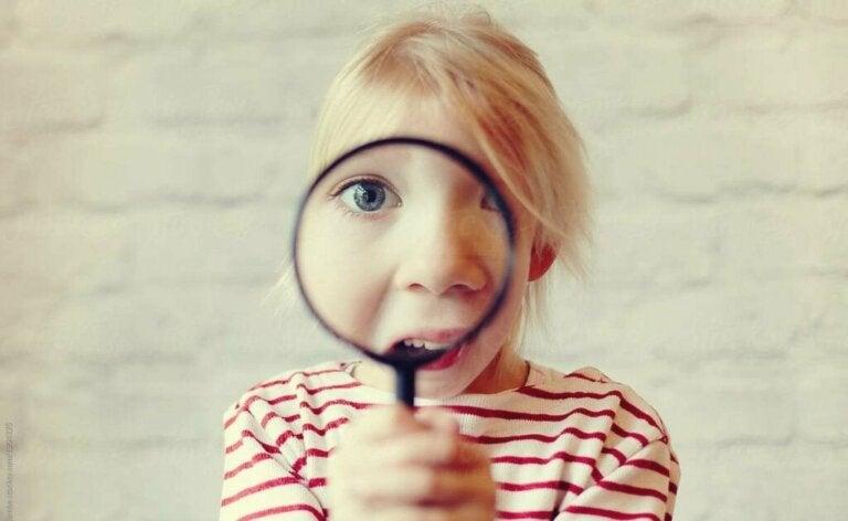 Como funciona o princípio da curiosidade na mente humana?