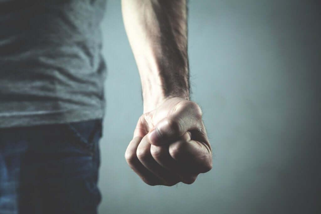 Quais são as causas da agressividade?