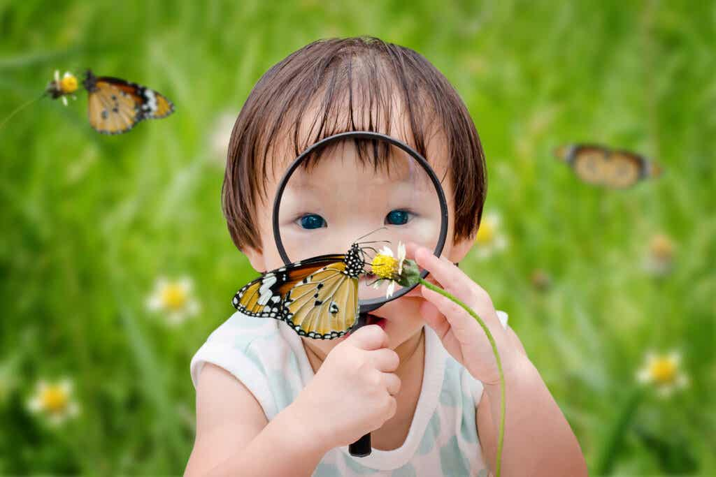 Criança observando borboleta