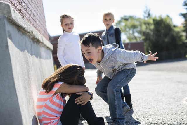 Criança que faz bullying