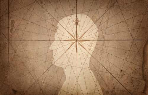 A bússola da mente humana