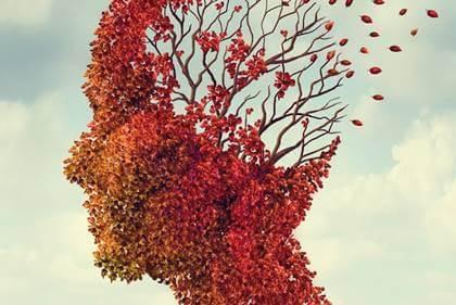 O que é a demência vascular?
