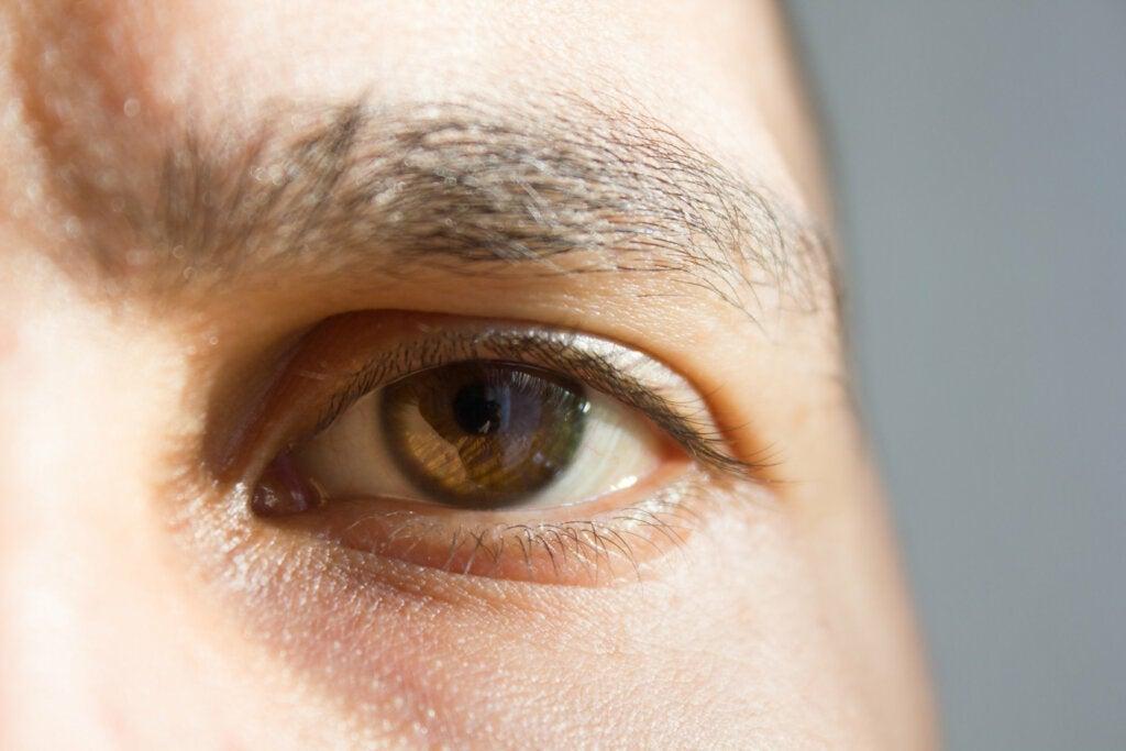 7 curiosidades sobre os sentidos