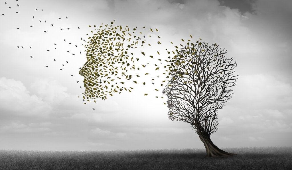 Diferenças entre Alzheimer e demência