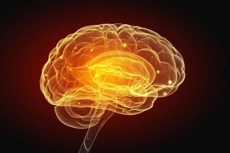 A inteligência artificial nos permitirá escrever com o pensamento