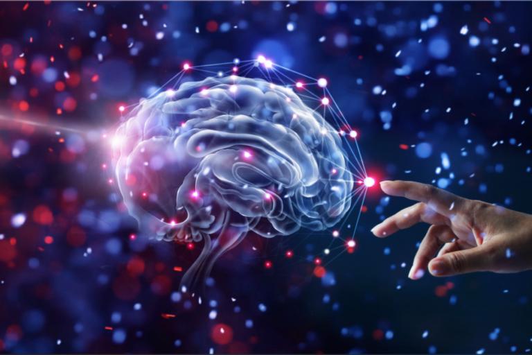 Emoções primordiais ou instintivas: a origem da nossa consciência