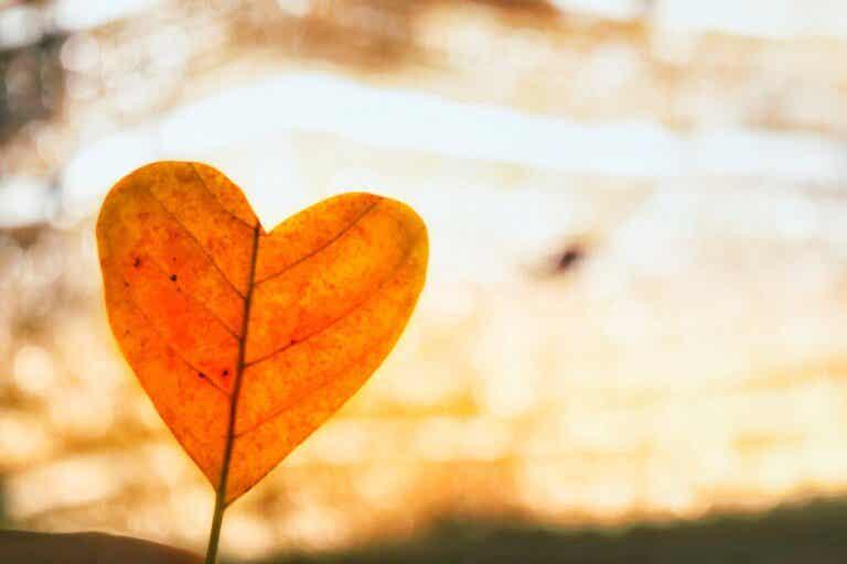 O amor incondicional como forma de superar uma separação